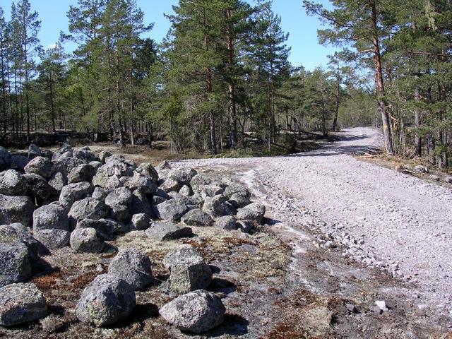 Skogsbilväg Snäckedal. Lägg märke till hur nära fornlämningen vägen förbättrats! Här syns åverkan på vegetation och marktäcket under själva fornlämningen!