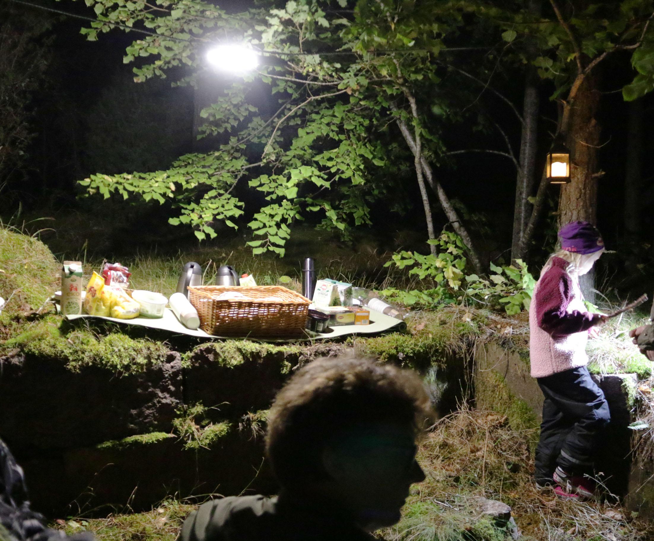 Fladdermuskvällens höjdpunkt och något att minnas kom när en härlig fika serverades vid stenbrottet Brödlösa som dessutom vackert tänts upp i i höstnatten. Allt detta var möjligt tack vare en fantastiskt insats från personerna bakom Rädda Våneviks gammelskog!
