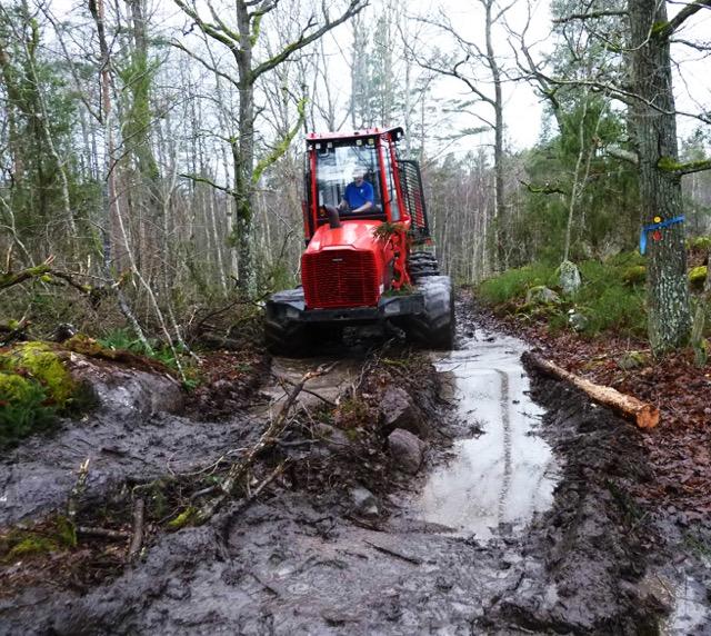 SkogsmaskinGunnarsö 0007